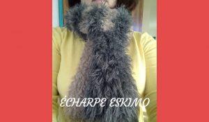# Tricot : écharpe Eskimo