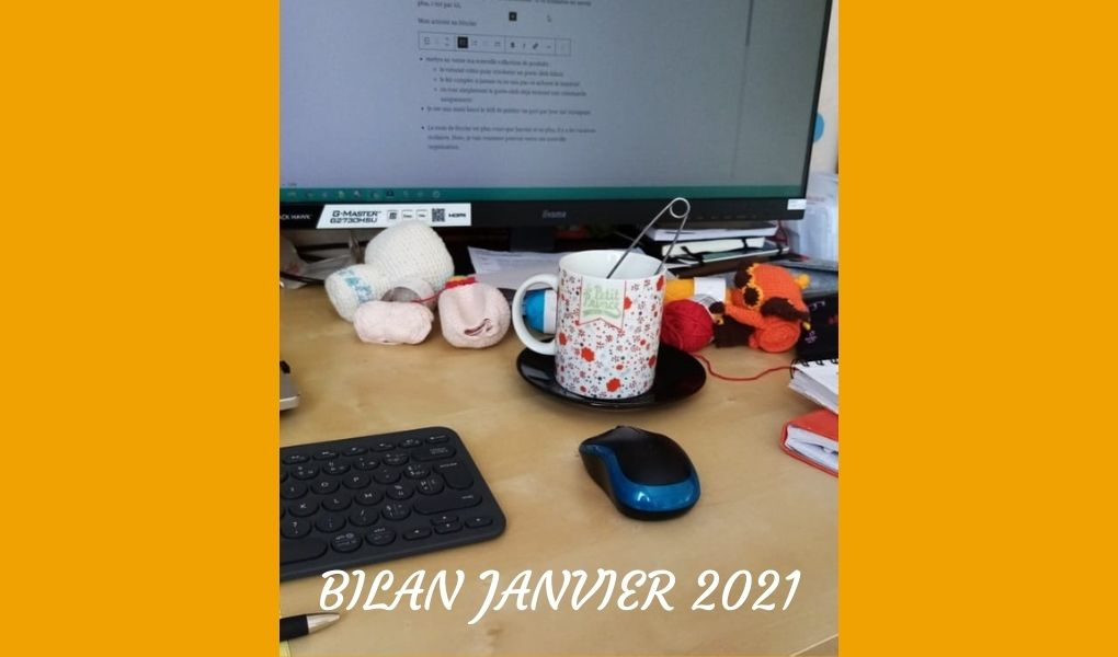 Bilan Janvier 2021